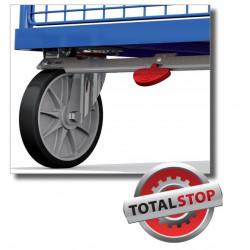 Système de blocage centralisé pour chariots